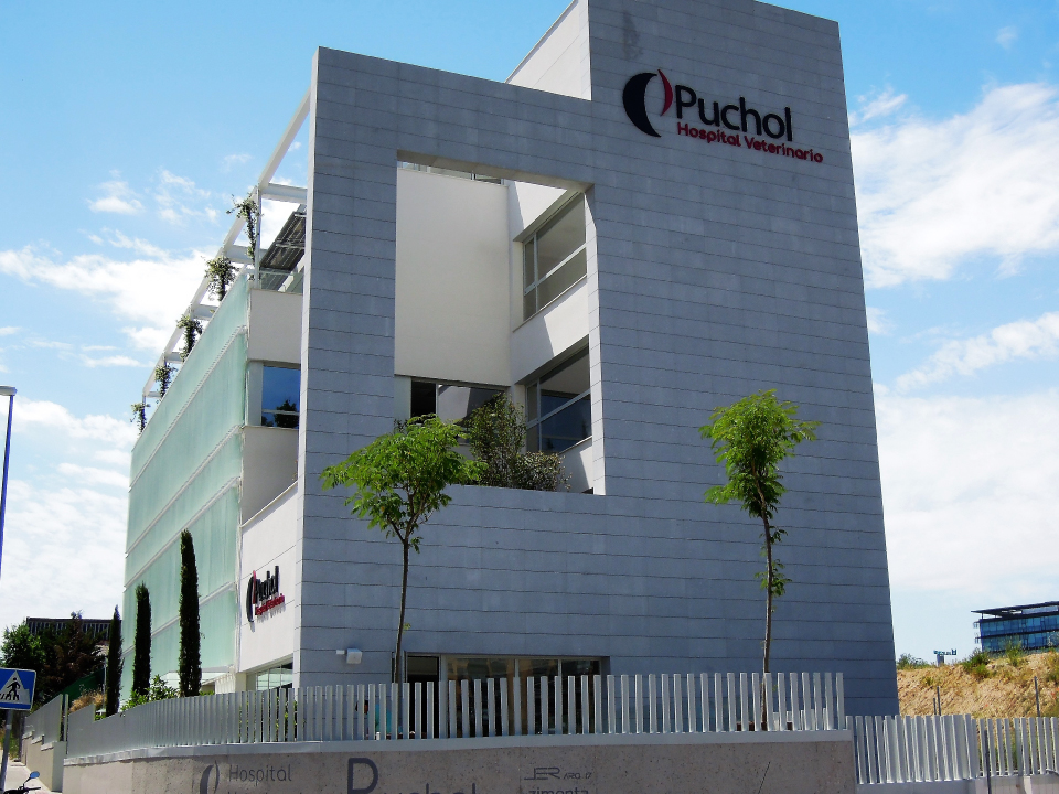 Hospital Veterinario Puchol
