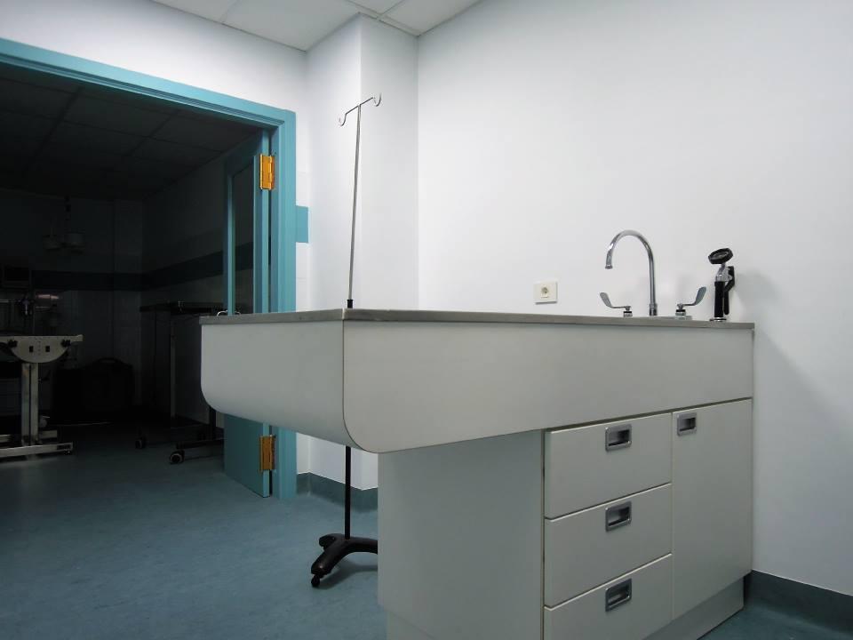 veterinaria san froilan 09